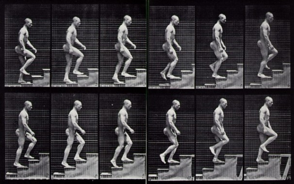 Escaleras - Muybridge