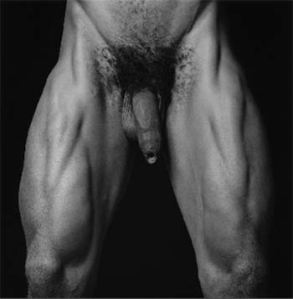 mapplethorpe16