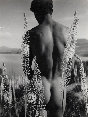 herbert-list-young-arab-with-foxtail-lilies-hammamet-tunisia-1935