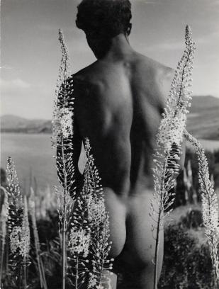 herbert-list-young-arab-with-foxtail-lilies-hammamet-tunisia-1935