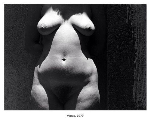 Venus, 1979