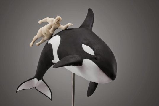 whale-escort.jpg