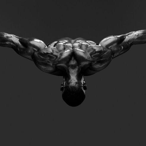 01a-Human Body Study 1415-ok.jpg