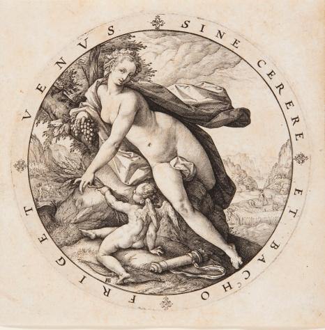 Venus y Cupido.jpg