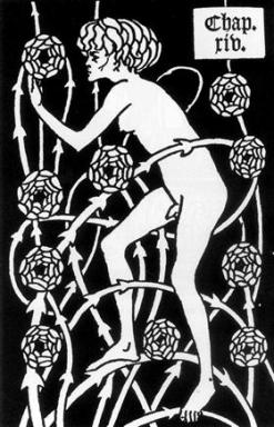 hermafrodita entre las rosas.jpg
