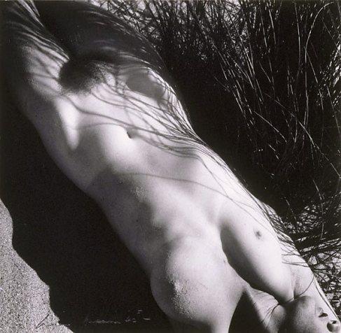 nude in grass 1939.jpg
