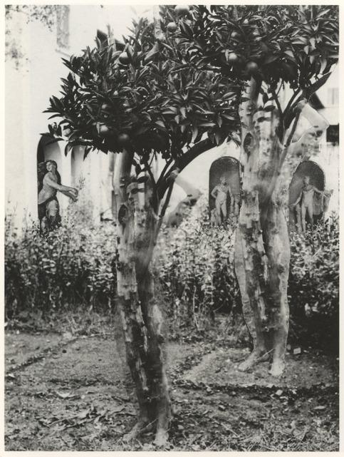 Gregorio Prieto+Eduardo Chicharro Briones+Metamorfosi (c. 1928–1930)